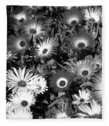 Monochrome Asters Fleece Blanket