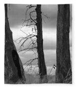 Monochrome Trees Fleece Blanket