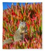 Monterey Squirrel Fleece Blanket