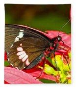 Montezuma Cattleheart Butterfly Fleece Blanket