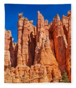 Monuments Of Time Fleece Blanket