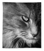 Moody Cat Fleece Blanket