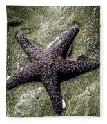Moody Starfish I Fleece Blanket