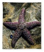 Moody Starfish IIi Fleece Blanket