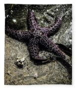 Moody Starfish Iv Fleece Blanket