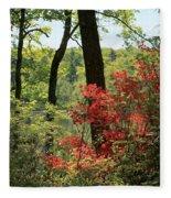 Moore State Park Spring Fleece Blanket