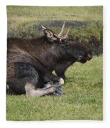 Moose At Rest Fleece Blanket