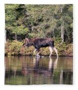 Moose_0587 Fleece Blanket