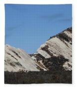 Morman Rocks Fleece Blanket