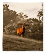 Morning Call Fleece Blanket