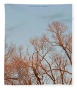 Morning Coloured In Fall Fleece Blanket
