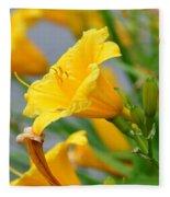 Morning Daylilies Fleece Blanket