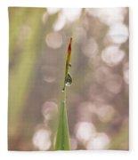 Morning Dew On A Grass Fleece Blanket