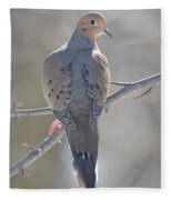 Mourning Dove Fleece Blanket