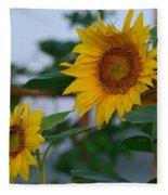 Morning Field Of Sunflowers Fleece Blanket