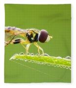 Morning Hoverfly Fleece Blanket