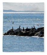 Morning Meeting - Lyme Regis Fleece Blanket