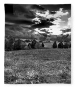 Morning On The Farm Two Bw Fleece Blanket