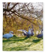 Morning Stretch - Impressions Fleece Blanket