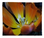 Morning Tulip Fleece Blanket