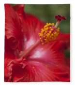 Morning Whispers Fleece Blanket