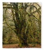 Moss-covered Bigleaf Maple  Fleece Blanket