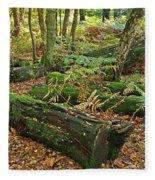 Moss Covered Logs On The Forest Floor Fleece Blanket