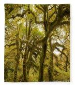 Moss-covered Maple Grove Fleece Blanket