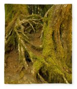 Moss-covered Tree Trunks  Fleece Blanket