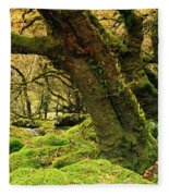 Moss Covered Trees In A Forest Fleece Blanket