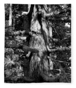 Moss On The Evergreens II In Black And White Fleece Blanket