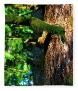 Moss On The Evergreens Fleece Blanket