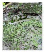 Moss Rock Fleece Blanket