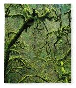 Mossy Trees Leafless In The Winter Fleece Blanket