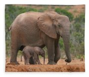 Mother And Calf Fleece Blanket
