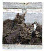 Cat And Kittens Fleece Blanket