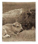 Mother Buffalo And Calf Sepia Fleece Blanket
