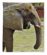 Mother Elephant Fleece Blanket