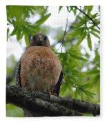 Mother Red Shouldered Hawk Fleece Blanket