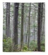 Mount Jim - Kinsman Notch New Hampshire Fleece Blanket