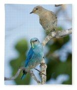 Mountain Bluebird Pair Fleece Blanket
