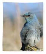 Mountain Bluebird Fleece Blanket