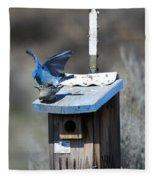 Mountain Bluebirds Mating Fleece Blanket