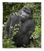 Mountain Gorilla Praying Fleece Blanket