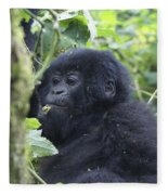 Mountain Gorillas Fleece Blanket