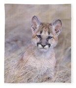 Mountain Lion Cub In Dry Grass Fleece Blanket