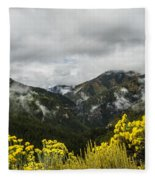 Mountain Rain Fleece Blanket