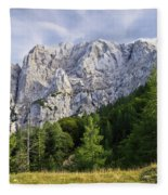 Mountain Scene Fleece Blanket
