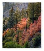 Mountain Side Colors Fleece Blanket