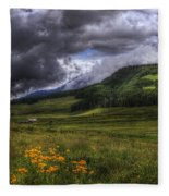 Mountain Storm Fleece Blanket